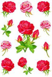 Decor-tarra  Ruusut 33 tarraa