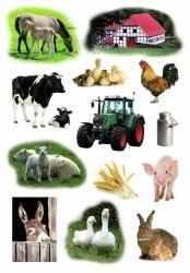 Decor-tarra  Maatilan eläimet 39 tarraa