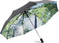 Sateenvarjo  luonto